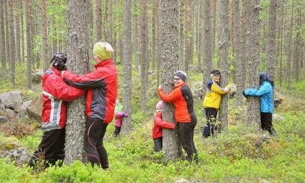 Voimaa puista, luonnosta ja makkarasta
