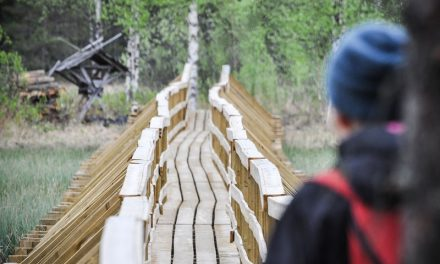 Heinäjoen lupaavalle luontoreitille alkukesästä omalla vastuulla